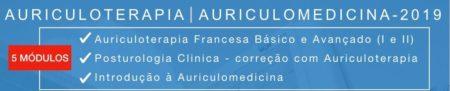 Auriculoterapia – Copia
